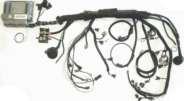 E36 Harness Conversion For LS Powered 3-Series - New Age Hotrods on ls1 power steering pump, ls1 swap harness, ls1 fuel filter, ls1 oil cooler, ls1 exhaust, ls1 ignition wire terminals, 68 camaro ls1 wire harness, ls1 pulley, stock ls1 harness, ls1 fuel rail, ls1 engine harness, ls1 driveshaft, ls1 fuel pressure regulator, ls1 fuel line, ls1 wheels, 2000 ls1 harness, ls1 brakes, custom ls1 harness, ls1 carburetor,